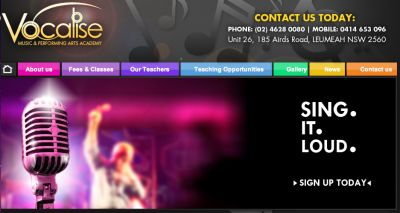 Vocalise Music and Performing Arts Academy
